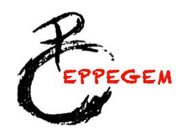 Chiro Eppegem